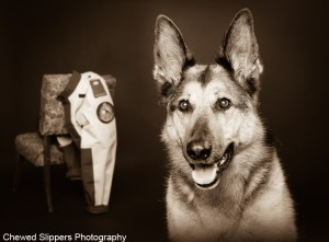 search-and-rescue-artwork-by-chewed-slippers-photography-300x221
