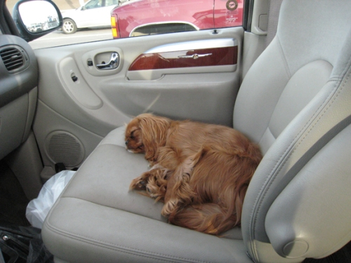 Hanging out in the car can be exhausting