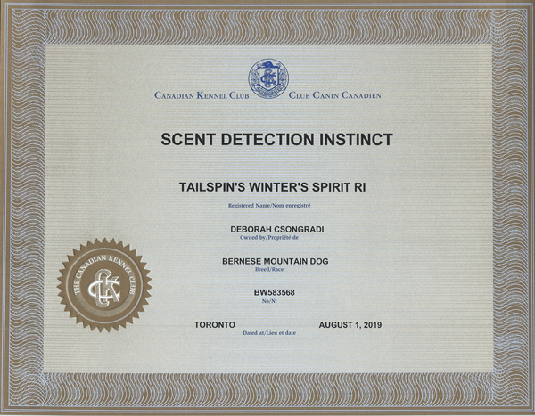 SpiritCKC-SDIN